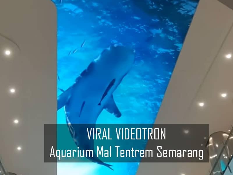 Viral Kerennya Videotron Aquarium Hotel Tentrem